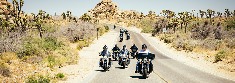 Motorcycle guided tour riding through Joshua Tree National Park